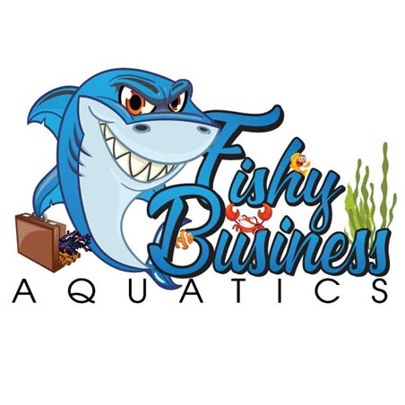 "47""x81"" Popup Retractable Banner FREE SHIPPING 4781-B2-RBS Popup Banners $172.98"
