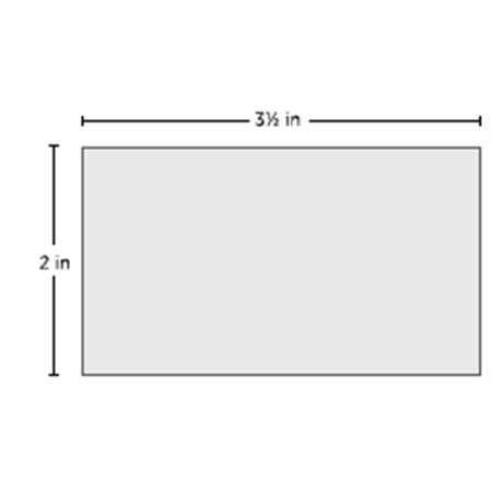 Lady Liberty Centennial Style 10.5 Foot Flag with Ground Stake Hardware & Free Shipping