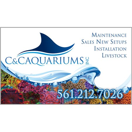 Bethune Scottish Clan Custom Pole Flag