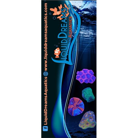 """23""""x66"""" Popup Retractable Banner FREE SHIPPING 2366-B2-RBS Popup Banners $113.10"""